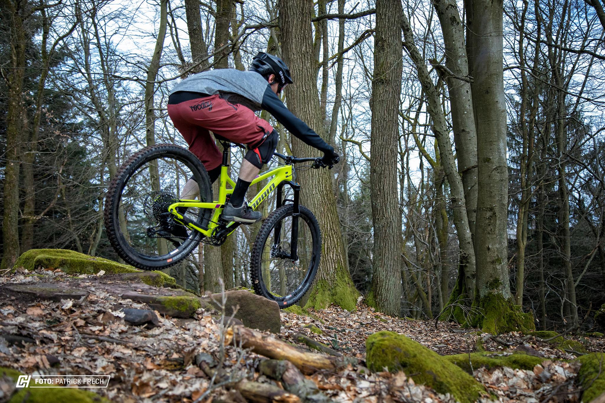 """29"""" Trailbike"""