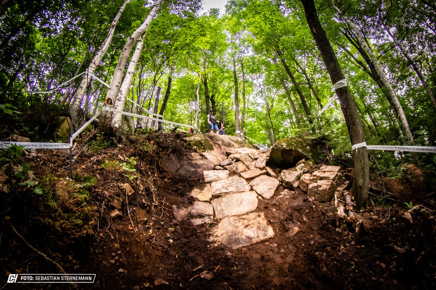 MSA Cycleholix Trackwalk 027 by Sternemann Cycleholix