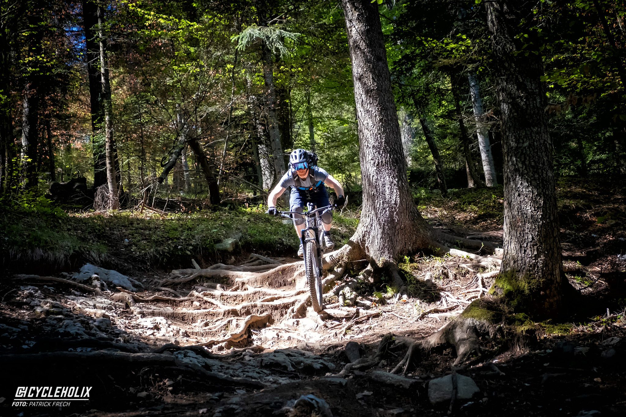 Trail Days 2019, Bikepark Paganella, Easyrider