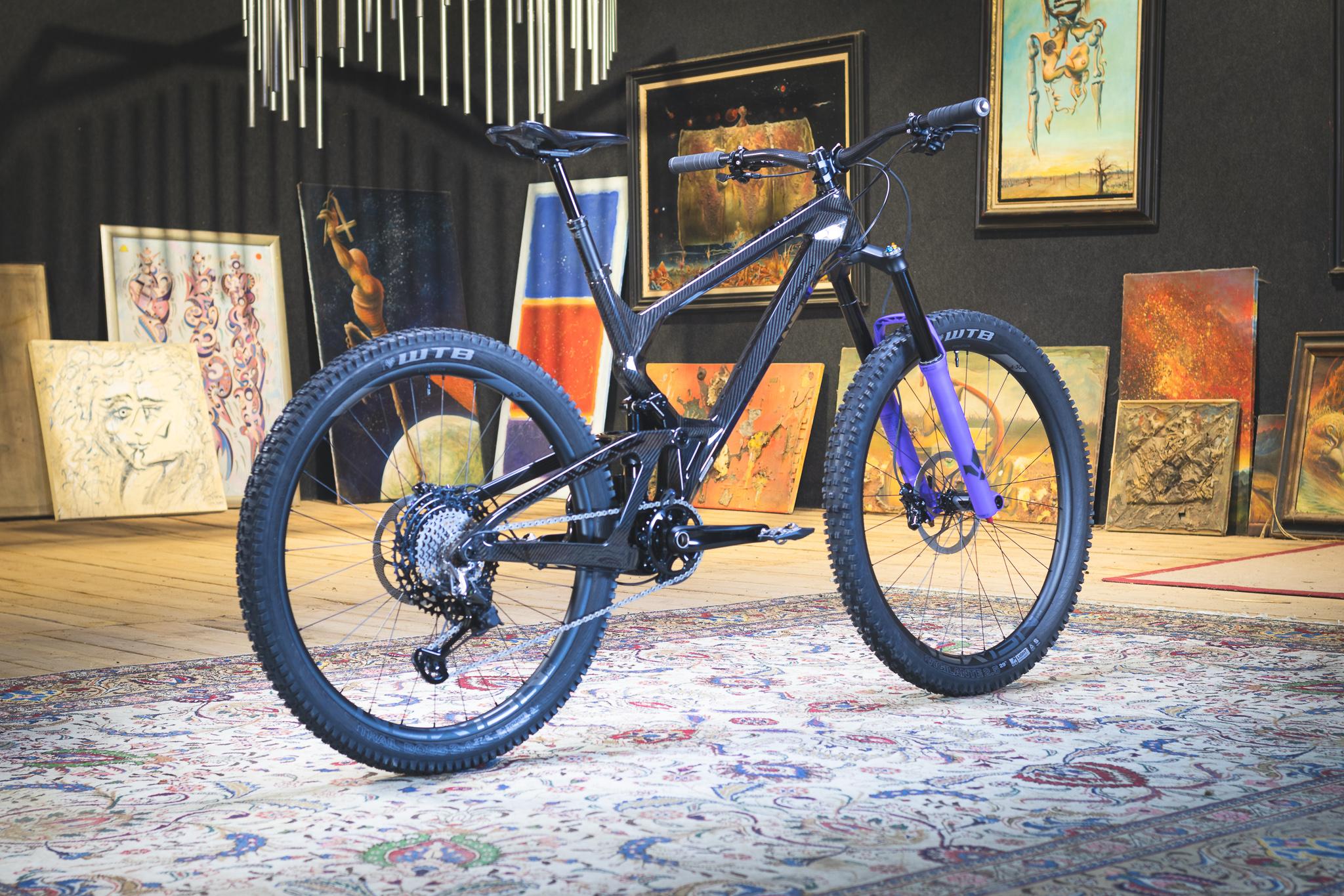 CJ Mullet Bike Build Final 5